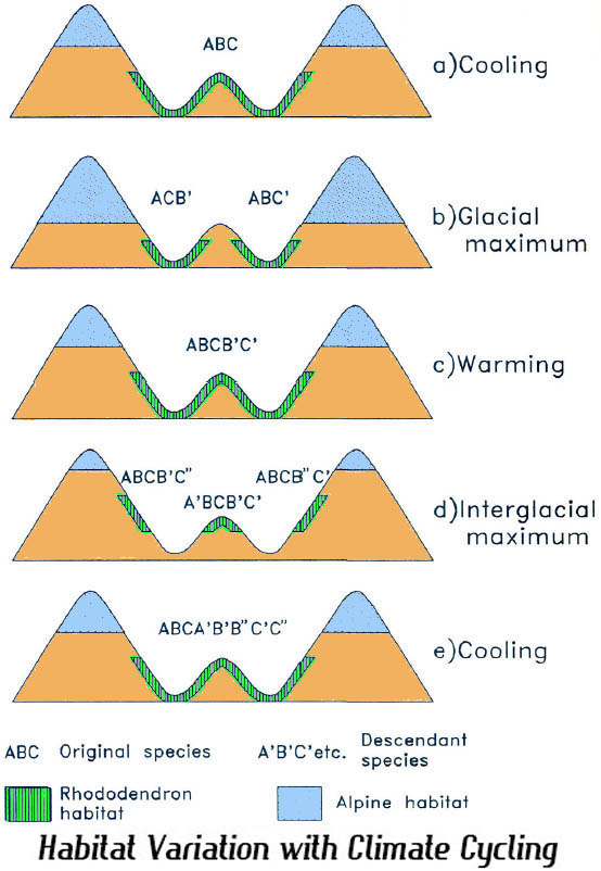 Habitat Variation with Climate Cycling