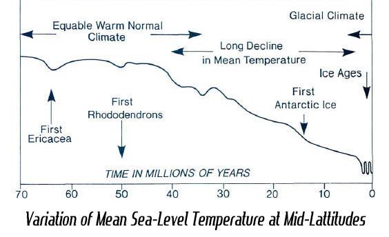 Variation in Sea-Level Temperature