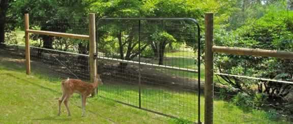 Mesh Fencing nz Steel Mesh Deer Fence